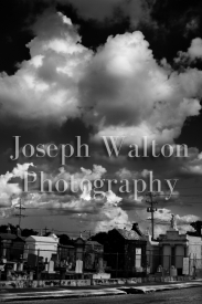 Joseph Walton Photography 147