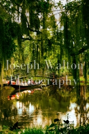 Joseph Walton Photography 21