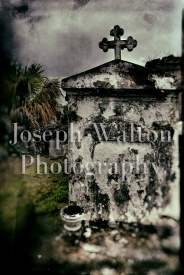 Joseph Walton Photography 26